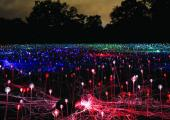 Bruce Munro: Field of Light, lysinstallation i Eventyrhaven i Odense 6. december 2017